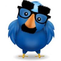Redes Sociales falsos seguidores